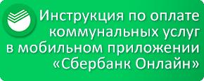 http://rkc-lesnoy.ru/inst_sber_online/